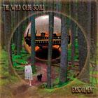 Wyld Olde Souls